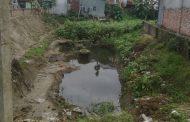 মির্জাপুর পৌর এলাকায় বেড়েছে মশার উৎপাত