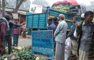 দাম কম থাকায় ভাড়া না দিয়েই ট্রাকবোঝাই ফুলকপি রেখে পালালেন ব্যবসায়ী