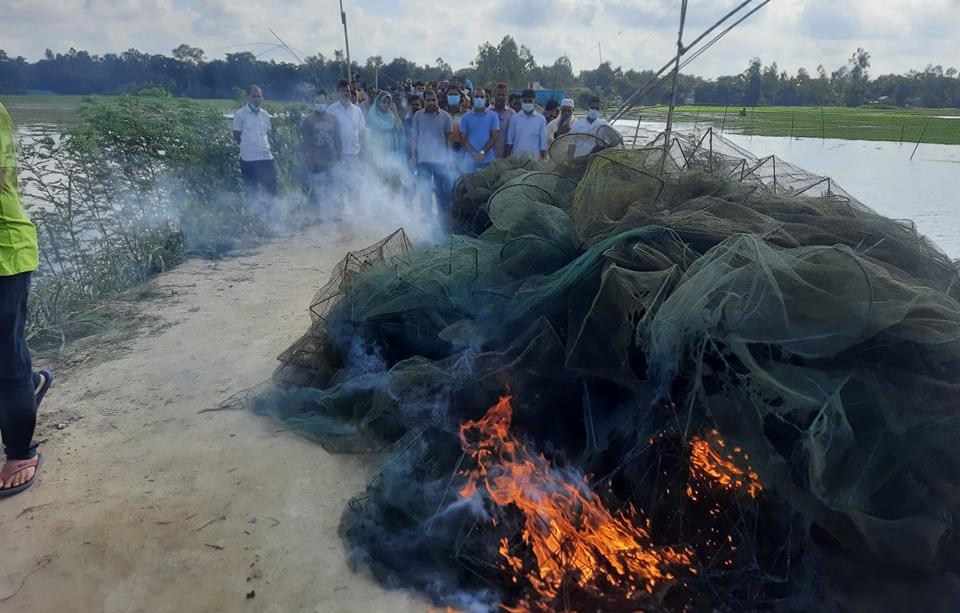 বাসাইলে ৪০টি চায়না জাল পুড়িয়ে ধ্বংস